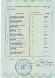 diplom_2_1